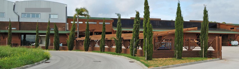 Quinta da Madeira Instalações 6